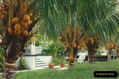 1991-11-27 to 29 Key West, Florida.  (6)169