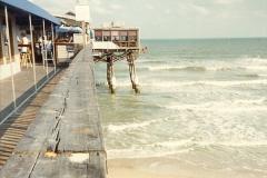 1991-12-05 to 06 Florida.  (8)276