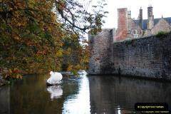 2014-11-12 Wells, Somerset.  (2)02