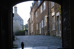 2014-11-14 Frome, Somerset.  (30)53