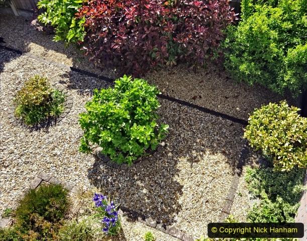 2020-05-09 Your Host's Back & Front Garden. (56) 056
