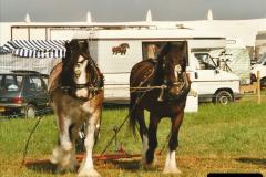 GDSF 1997 Picture (67)067