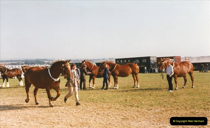 GDSF 1999. Picture (162) 162