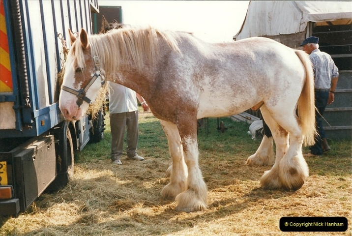 GDSF 1999. Picture (164) 164