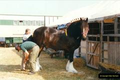 GDSF 1999. Picture (163) 163