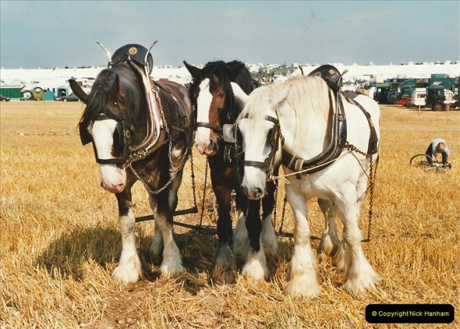GDSF 2001. Picture  (143) 143