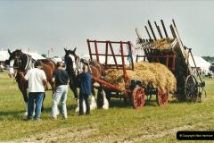 GDSF 2002. Picture (142) 142
