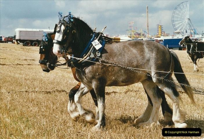 GDSF 2004. Picture  (167) 167