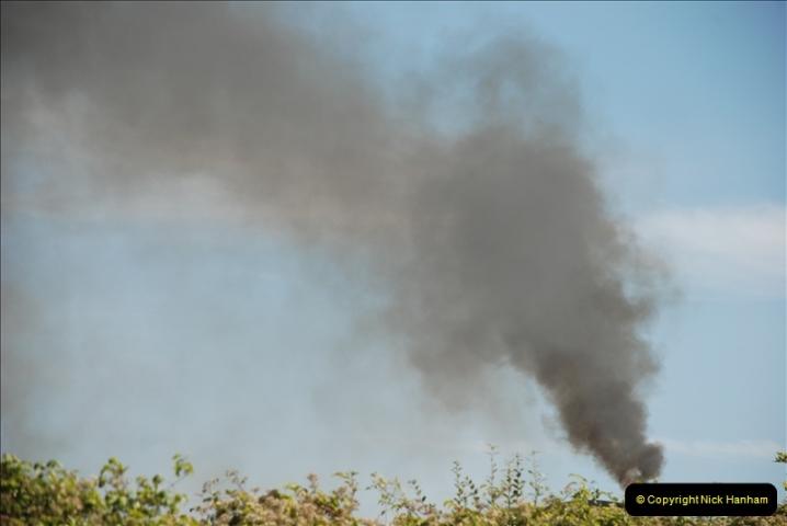 GDSF 2010. Picture  (573) 573