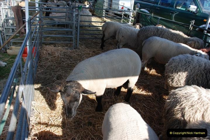 GDSF 2010. Picture  (647) 647