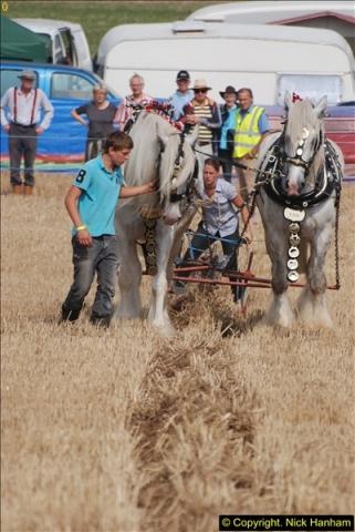 2013-08-28 The Great Dorset Steam Fair 1 (386)386