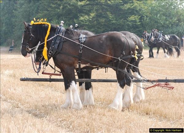 2013-08-28 The Great Dorset Steam Fair 1 (391)391