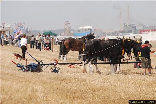 2013-08-28 The Great Dorset Steam Fair 1 (395)395