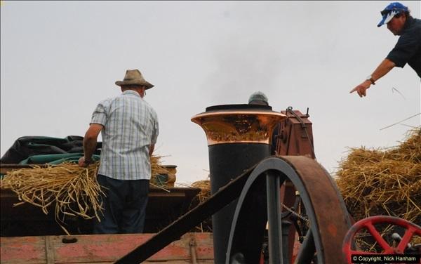 2016-08-25 The GREAT Dorset Steam Fair. (518)519