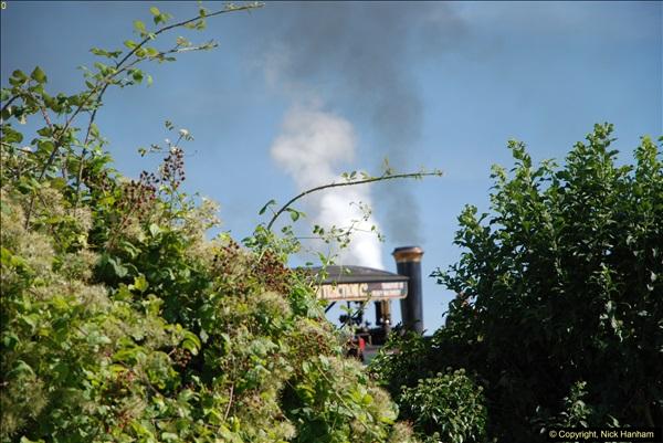 2016-08-26 The GREAT Dorset Steam Fair. (32)032