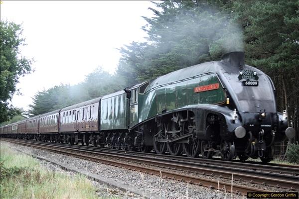 2017-09-06 60009 In Dorset.  (2)63