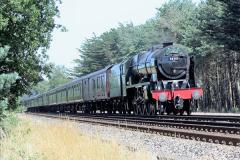 2016-07-14 Wareham, Dorset.  (1)18