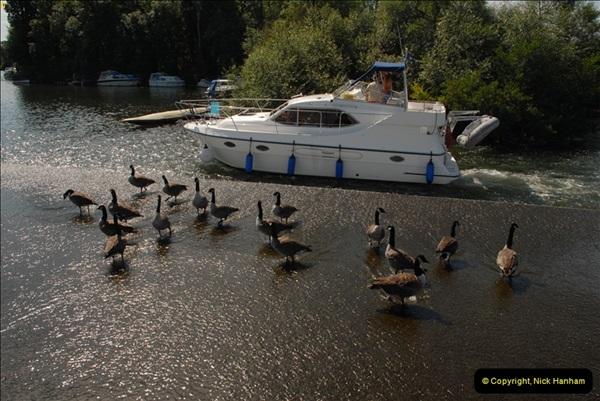 2012-08-18 Hambleden Lock, River Thames, Berkshire.  (15)15