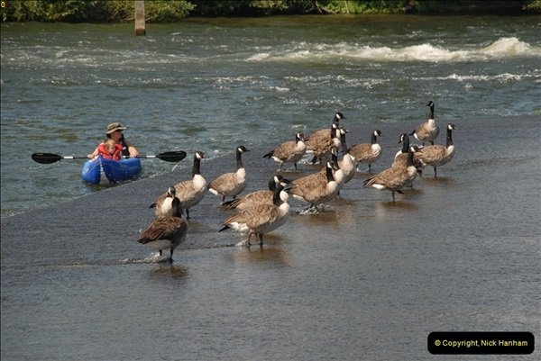 2012-08-18 Hambleden Lock, River Thames, Berkshire.  (12)12