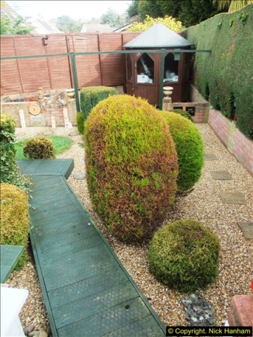 2015-03-08 Back & Front garden before changes.  (1)058