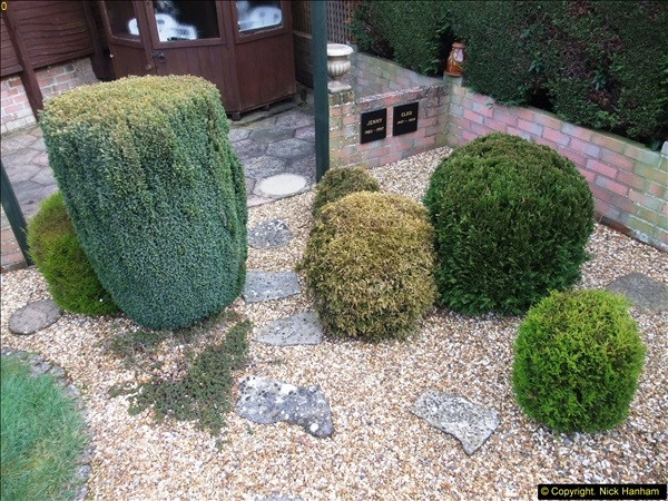 2015-03-08 Back & Front garden before changes.  (3)060