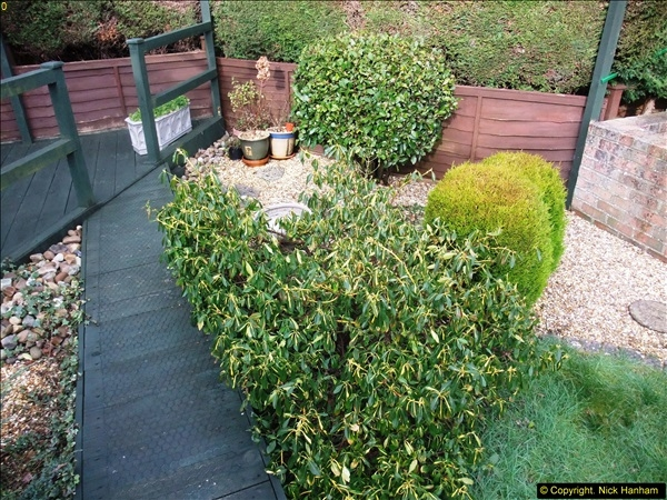 2015-03-08 Back & Front garden before changes.  (4)061
