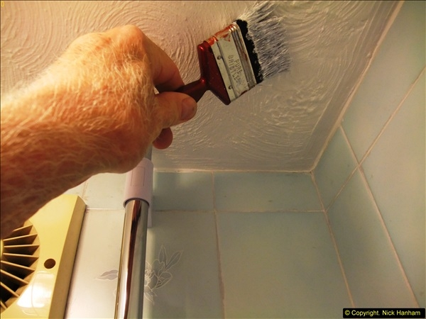 2015-07-19 to 21 Decorating the loo and shower room. (6)539