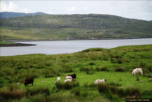 2014-06-10 Lewis - Harris & Faroe Islands. (145)173
