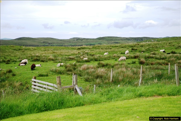 2014-06-10 Lewis - Harris & Faroe Islands. (147)175