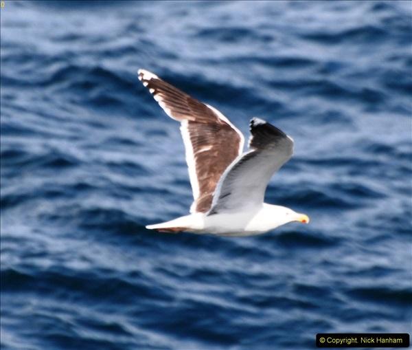 2014-06-10 Lewis - Harris & Faroe Islands. (228)256