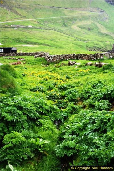 2014-06-11 Lewis - Harris & Faroe Islands. (112)378