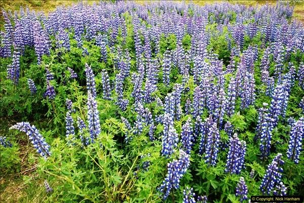 2014-06-12 Iceland. (125)125