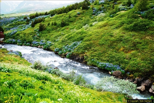 2014-06-12 Iceland. (127)127