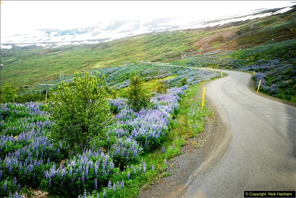 2014-06-12 Iceland. (153)153