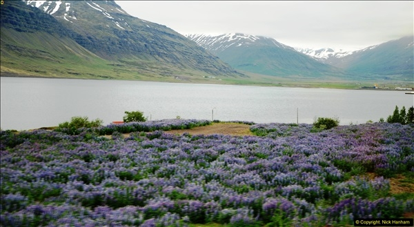2014-06-12 Iceland. (79)79