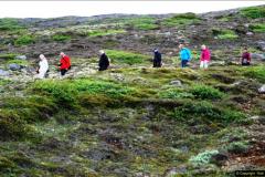 2014-06-12 Iceland. (51)51