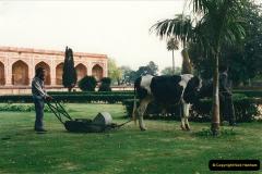 India February 2000  7