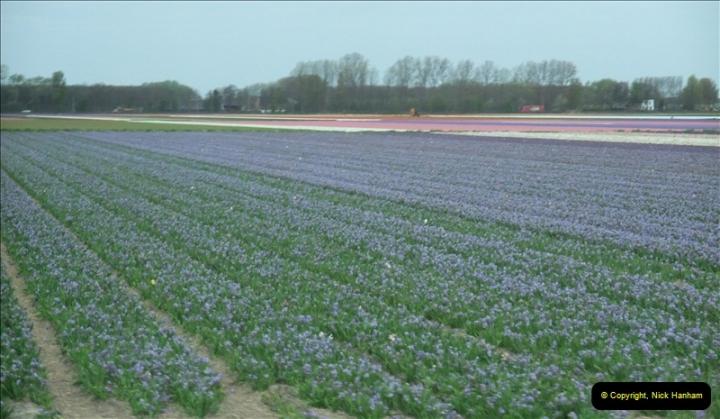 2012-04-26 Keukenhof Gardens.  (10)10