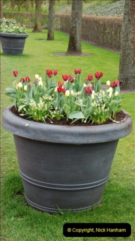 2012-04-26 Keukenhof Gardens.  (25)25