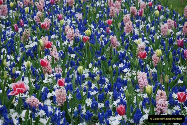 2012-04-26 Keukenhof Gardens.  (32)32