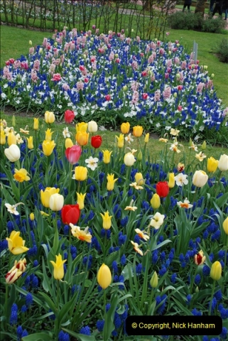 2012-04-26 Keukenhof Gardens.  (33)33