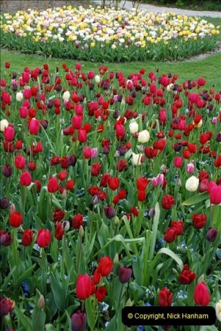 2012-04-26 Keukenhof Gardens.  (46)46
