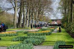 2012-04-26 Keukenhof Gardens.  (105)105