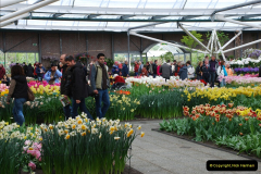 2012-04-26 Keukenhof Gardens.  (124)124