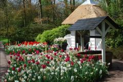 2012-04-26 Keukenhof Gardens.  (127)127