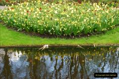 2012-04-26 Keukenhof Gardens.  (131)131