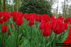 2012-04-26 Keukenhof Gardens.  (138)138