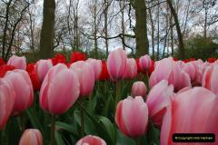 2012-04-26 Keukenhof Gardens.  (143)143