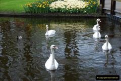 2012-04-26 Keukenhof Gardens.  (149)149
