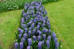 2012-04-26 Keukenhof Gardens.  (160)160